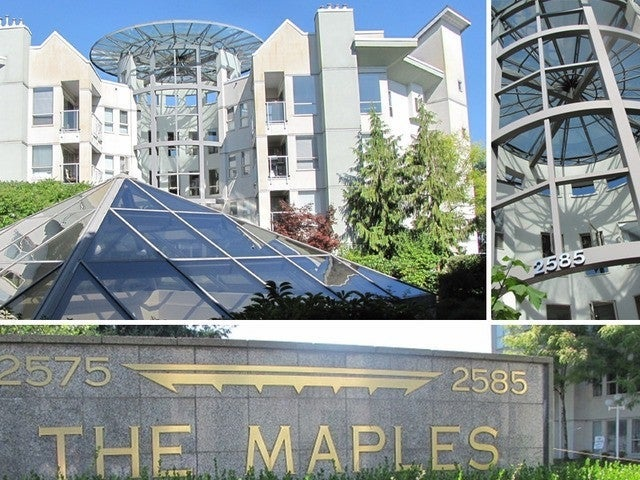 The Maples   --   2585 WARE ST - Abbotsford/Central Abbotsford #1
